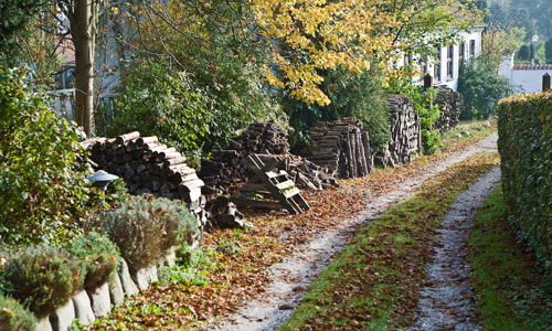 fall_colors_and_firewood_stacks