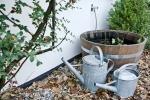 vandkander-hyggelig-weekend-hos-bb-albertine-hotel