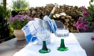 Terrace with cooler, ready for fun at Bed and Breakfast Hotel Albertine